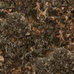 Brown Gorund